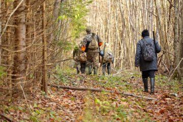 Jagdpachtvertrag: Schadensersatzpflicht bei vorzeitiger Vertragsbeendigung