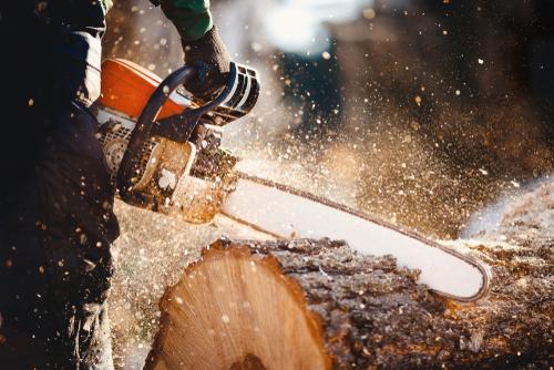 Haftung bei Arbeitsunfall - Baumfällarbeiten als gefährliche Tätigkeit