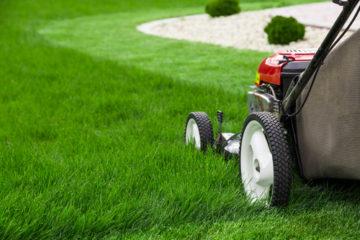 Betriebskostenabrechnung – Wirtschaftlichkeitsgrundsatz bei Gartenpflegekosten