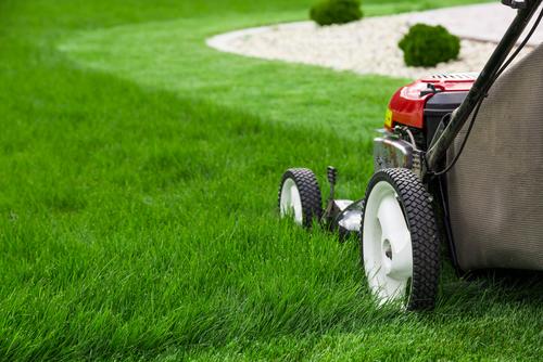 Betriebskostenabrechnung - Wirtschaftlichkeitsgrundsatz bei Gartenpflegekosten