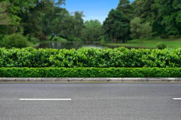 Verkehrssicherungspflicht – Freischneiderarbeiten am Straßenrand