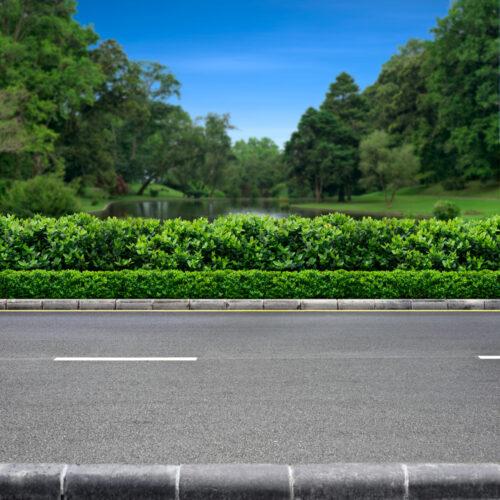 Verkehrssicherungspflicht - Freischneiderarbeiten am Straßenrand